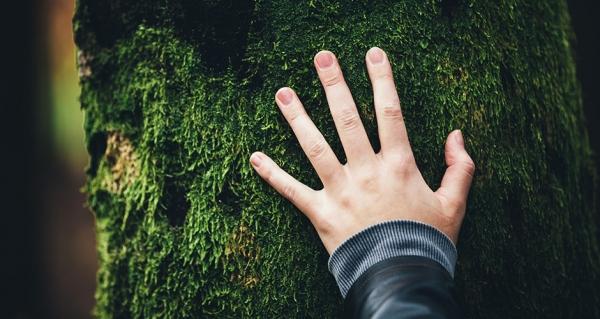 Umweltbelange - Bericht an die Gesellschaft    KSK Heinsberg 2018